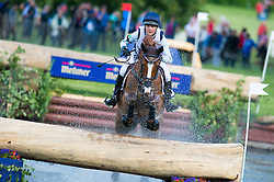 Brown Lizzie (NZL) - Playtime <br /> Cross country<br /> CCI3*  Luhmuhlen 2014 <br /> © Hippo Foto - Jon Stroud