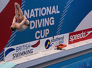National Diving Cup 2016 - 22/01/2016