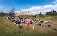 English Heritage Dog Walk