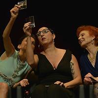 6th Lyon Film Festival: Tribute To Pedro Almodovar - Lumiere 2014