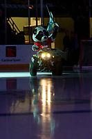 KELOWNA, BC - JANUARY 26: Rocky Raccoon, the mascot of the Kelowna Rockets, enters the ice on his Polaris ATV against the Vancouver Giants at Prospera Place on January 26, 2020 in Kelowna, Canada. (Photo by Marissa Baecker/Shoot the Breeze)