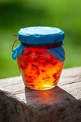 Bramley apple and chilli jelly in a jar