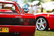 Testerosa at Gloucester Motorshow (13/06/10)