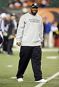 Pittsburgh Steelers head coach Mike Tomlin smiles during pregame warmups before the NFL AFC Wild Card playoff football game against the Cincinnati Bengals on Saturday, Jan. 9, 2016 in Cincinnati. The Steelers won the game 18-16. (©Paul Anthony Spinelli)