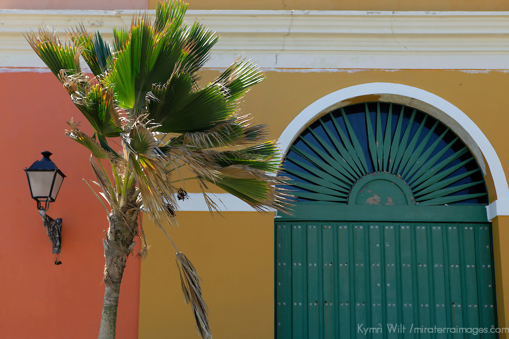 USA, Puerto Rico, San Juan. Palm and facade of Old San Juan, Puerto Rico.