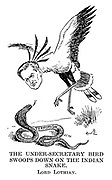The Under-Secretary Bird Swoops Down on the Indian Snake. Lord Lothian.