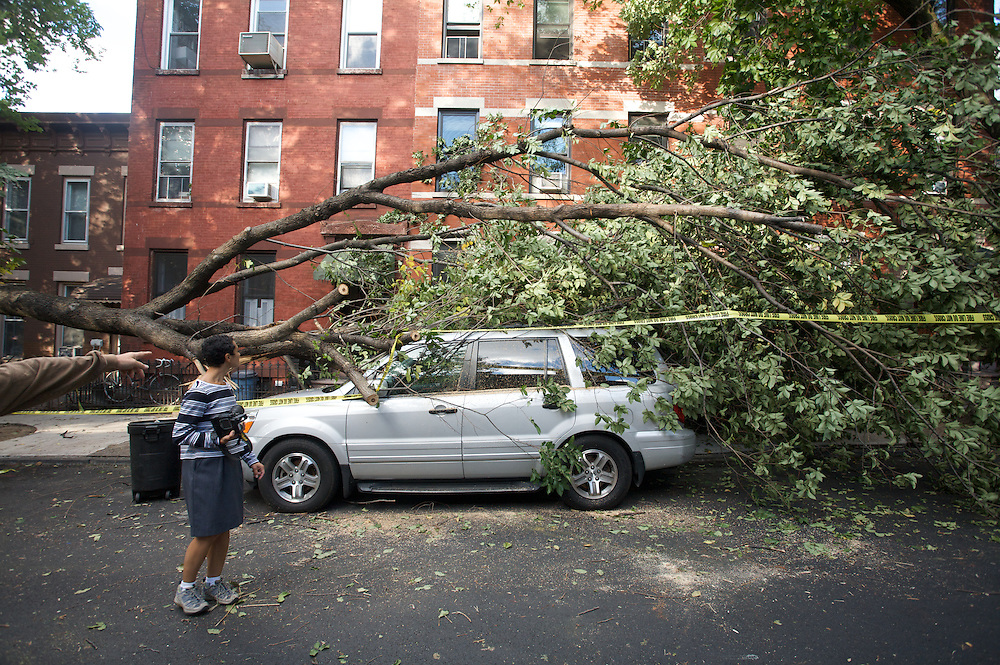 Park Slope tornado in Brooklyn, New York. 2010