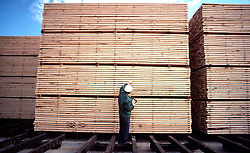 Stacked Finished Lumber, Paper Mill