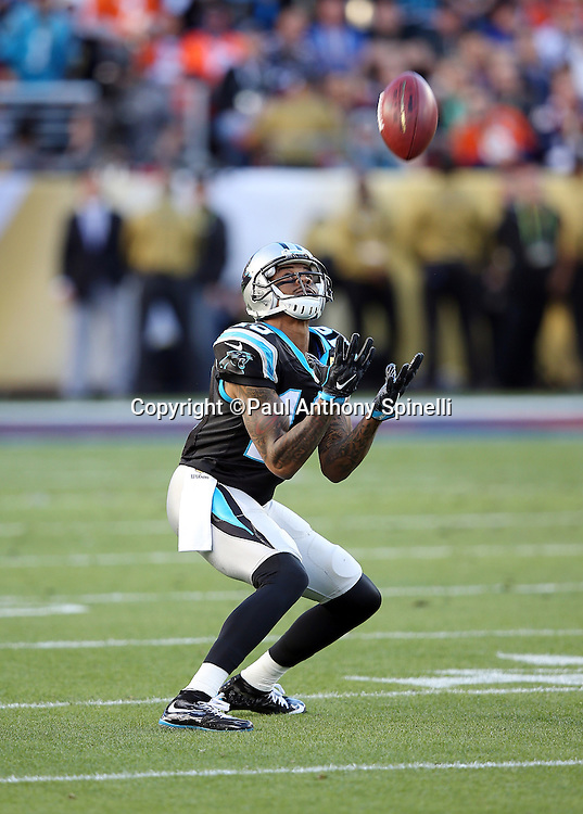 Carolina Panthers wide receiver Ted Ginn, Jr. (19) catches a punt during the NFL Super Bowl 50 football game against the Denver Broncos on Sunday, Feb. 7, 2016 in Santa Clara, Calif. The Broncos won the game 24-10. (©Paul Anthony Spinelli)
