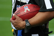 Nov 11, 2018; Tampa, FL USA: A referee holds the game balll commemorating Salute to Service month before a game at Raymond James Stadium between the Tampa Bay Buccaneers and the Washington Redskins. The Redskins beat the Buccaneers 16-3. (Steve Jacobson/Image of Sport)