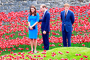 Royal visit to The Tower Of London Ceramic Poppy installation - Blood Swept Lands and Seas of Red
