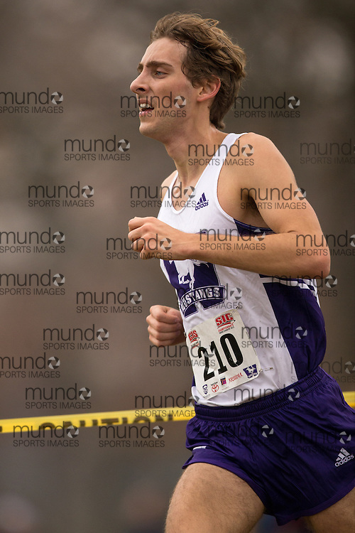 London, Ontario ---2012-11-10--- Ryan Armstrong of the Western Mustangs  competes at the 2012 CIS Cross Country Championships at Thames Valley Golf Course in London, Ontario, November 10, 2012. .GEOFF ROBINS Mundo Sport Images