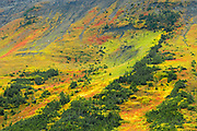 Autumn in the alpine of teh Canadian Rocky Mountains<br /> Kananaskis Country<br /> Alberta<br /> Canada
