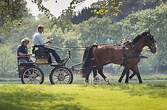 2018_05_08_Royal_Windsor_Horse_PM