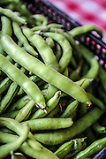 Raw Green beans in pod