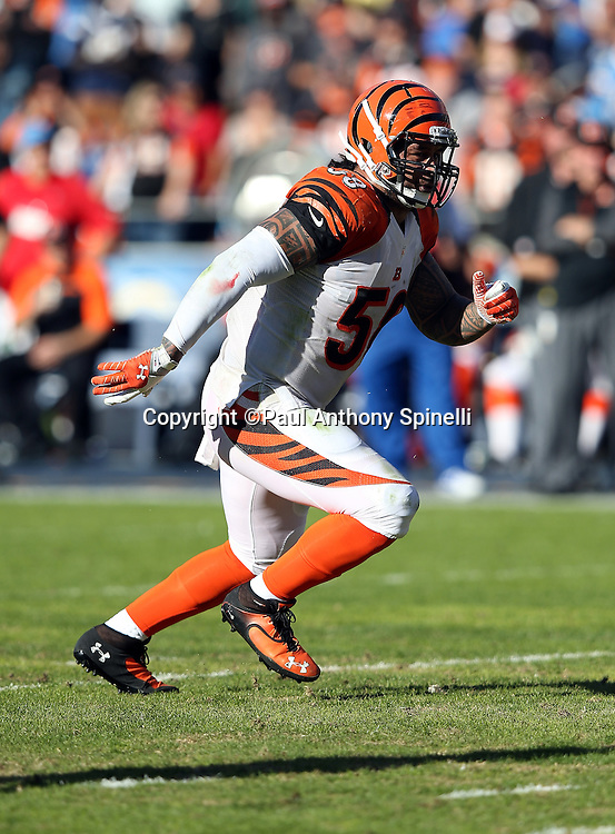 Cincinnati Bengals middle linebacker Rey Maualuga (58) chases the action during the NFL week 13 football game against the San Diego Chargers on Sunday, Dec. 1, 2013 in San Diego. The Bengals won the game 17-10. ©Paul Anthony Spinelli