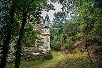 La chapelle de Bethl&eacute;em est une chapelle vou&eacute;e au culte catholique romain, situ&eacute;e &agrave; St Jean de Boiseau, en Loire-Atlantique.<br /> Le monument est construit au XVe&nbsp;si&egrave;cle, mais c&lsquo;est sa r&eacute;novation en 1995 qui le fait passer &agrave; la post&eacute;rit&eacute;.  Restaur&eacute;e par le sculpteur Jean-Louis Boistel,qui reprend  les codes de la&nbsp;mythologie, du&nbsp;christianisme et de l'&eacute;poque contemporaine, la chapelle se pare de sculptures pour le moins surprenantes :  gremlins, aliens et m&ecirc;me Goldorak.<br /> L&rsquo;origine sacr&eacute;e du lieu vient de la pr&eacute;sence d&lsquo;une source, aupr&egrave;s de laquelle, initialement, le&nbsp;druidisme&nbsp;cr&eacute;e une c&eacute;r&eacute;monie &agrave;&nbsp;Beltane, afin de c&eacute;l&eacute;brer la f&eacute;condit&eacute;. <br /> Les chim&egrave;res sont les suivantes&nbsp;:<br /> - pinacle&nbsp;nord-ouest, dit de l&lsquo;&acirc;me &laquo;&nbsp;l&lsquo;Homme&nbsp;&raquo;:<br /> &bull;un&nbsp;sanglier&nbsp;(traque du spirituel)<br /> &bull;un&nbsp;centaure&nbsp;(conflits entre instinct et raison)<br /> &bull;Sainte Anne&nbsp;a l&lsquo;ancre (fermet&eacute;, solidit&eacute;, tranquillit&eacute;, fid&eacute;lit&eacute;)<br /> &bull;Adam&nbsp;<br /> - l&rsquo;archivolte, pr&eacute;sentant l&rsquo;arbre de vie<br /> - pinacle&nbsp;ouest, dit de l&lsquo;&acirc;me &laquo;&nbsp;la Femme&nbsp;&raquo;:<br /> &bull;&Egrave;ve<br /> &bull;une&nbsp;triade&nbsp;(Alma,&nbsp;Dahud&nbsp;et&nbsp;Malgwen)<br /> &bull;une&nbsp;sir&egrave;ne&nbsp;(luxure)<br /> &bull;un&nbsp;serpent&nbsp;(le fantasme et le myst&egrave;re)&nbsp;<br /> - pinacle&nbsp;sud-ouest, dit de l&lsquo;inconscient<br /> &bull;Goldorak&nbsp;(droiture, chevalier des temps modernes)<br /> &bull;un&nbsp;Gremlin&nbsp;(mauvais monstre de l&lsquo;homme)<br /> &bull;Gizmo&nbsp;(bon monstre qu&lsquo;est l&lsquo;homme)<br /> &bull;l&lsquo;ironie&nbsp;(arrogance de l&lsquo;homme)&nbsp;<br /> - pinacle&nbs