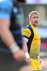 Dewald Potgieter (c) of Worcester Warriors - Mandatory by-line: Dougie Allward/JMP - 04/02/2017 - RUGBY - BT Sport Cardiff Arms Park - Cardiff, Wales - Cardiff Blues v Worcester Warriors - Anglo Welsh Cup