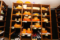 Variety of cheese in shelves at store