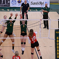 5th year middle Molly Wade-Cummings (4) of the Regina Cougars in action during Women's Volleyball home game on January 21 at Centre for Kinesiology, Health and Sport. Credit: Arthur Ward/Arthur Images