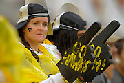 An Iowa Hawkeyes fan during the LSU Tigers 21-14 win over the Hawkeyes in the 2014 Outback Bowl at Raymond James Stadium on January 1, 2014 in Tampa, Florida.                               <br /> <br /> ©2014 Scott A. Miller