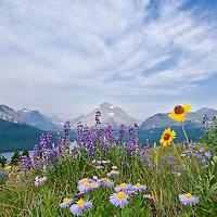 rocky mountain front, blackfeet reservation, rising wolf mountain