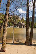 Trees on the beach along the Similkameen River during spring in Bromley Rock Provincial Park, Princeton, British Columbia, Canada