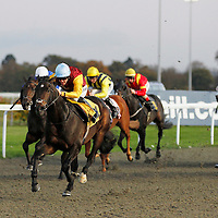 Young Prince and Jim Crowley winning the 4.30 race