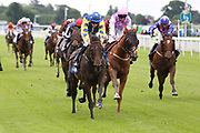 MUSIC SEEKER (12) ridden by Cian Macredmond and trained by Declan Carroll winning The Constant Security Handicap Stakes over 1m 2f (£15,000) duing the Midsummer Raceday held at York Racecourse, York, United Kingdom on 14 June 2019.