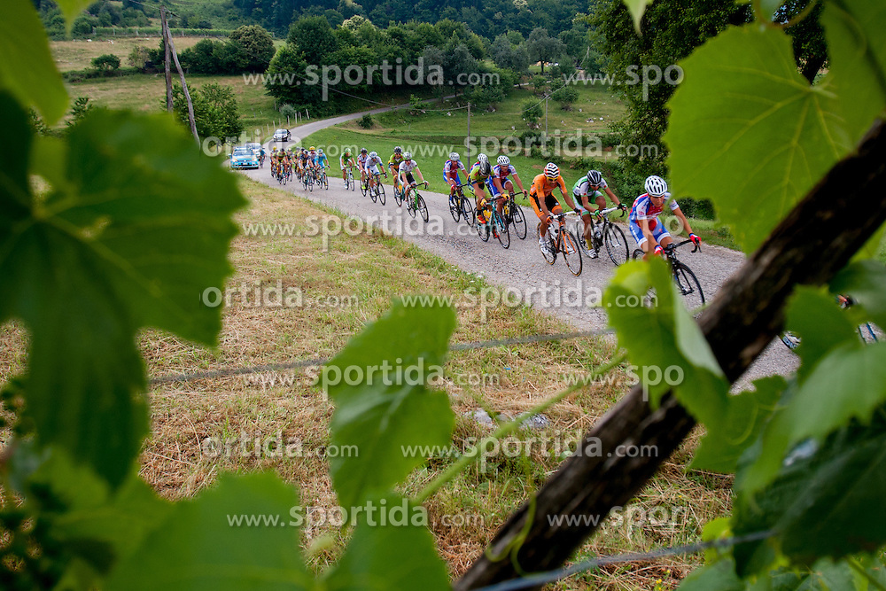 Peloton during Slovenian National Championship in Road Cycling, on June 23, 2013, in Gabrje, Slovenia. (Photo by Urban Urbanc / Sportida.com)