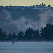 Northeast Tacoma early on a snowy morning - Washington