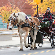 Children and adults always enjoy the horse drawn carraige rides at Christmasville in Old Town.