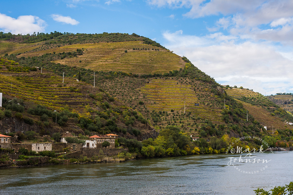 The steeply terraced hillside vineyards of the Douro Valley, Portugal