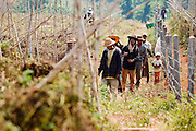 "25 FEBRUARY 2008 -- MAE SOT, TAK, THAILAND: Burmese migrant workers leave a tomato field near Mae Sot, Thailand. Almost all of the farm workers in the Mae Sot area are Burmese migrants, who work for about half of what Thai farm workers are paid. There are millions of Burmese migrant workers and refugees living in Thailand. Many live in refugee camps along the Thai-Burma (Myanmar) border, but most live in Thailand as illegal immigrants. They don't have papers and can not live, work or travel in Thailand but they do so ""under the radar"" by either avoiding Thai officials or paying bribes to stay in the country. Most have fled political persecution in Burma but many are simply in search of a better life and greater economic opportunity.  Photo by Jack Kurtz"
