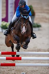 Goldstein Danielle (ISR) - Adamo van't Steenputje <br /> PSI FEI European Championships Jumping - Herning 2013<br /> © Dirk Caremans