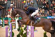 Tobias Bachl - Cullinan du Borget B<br /> Partner Pferd 2019<br /> &copy; DigiShots