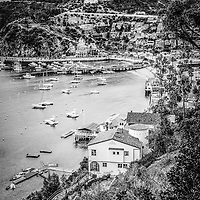 Catalina Island Avalon Bay black and white photo. Photo was taken from above Avalon Bay and includes the Green Pleasure Pier and Avalon city waterfront businesses. Catalina Island is a popular travel destination off the coast of Southern California in the United States.