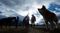 Prime Minister Justin Trudeau along with Chiefs of the Tsilhqot'in National Government are silhouetted as they arrive for a ceremony near Chilko Lake, B.C.,Friday, Nov. 2, 2018. The Prime Minister was in the area to apologize to the Tsilhqot'in community for the hangings of six chiefs during the so-called Chilcotin War over 150 years ago. Photo by The Canadian Press /Jonathan Hayward/ABACAPRESS.COM
