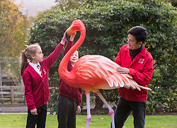 Szymon Buca (8) and Anna Forrest (8) from Braehead primary school in Stirling joke with Chinese lantern crafstman Chow Ming as he puts the finishing touches to a hand crafted flamingo lantern due to be part of Edinburgh Zoo's winter programme during the official welcoming ceremony for the team of craftsmen to the zoo.<br /> <br /> © Dave Johnston/ EEm