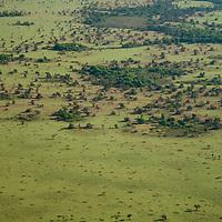 Vista aerea da  Ilha do Bananal, Parque Nacional do Araguaia, Tocantins, Brasil, foto de Ze Paiva, Vista Imagens.