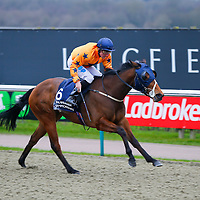Frivolous Lady - John Egan wins<br /> The 32Red Casino Claiming Stakes<br /> Lingfield Park<br /> 17/2/16.<br /> ©Cranhamphoto.com