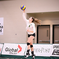 4th year middle blocker Kathleen Ens (8) of the Regina Cougars in action during Women's Volleyball home game on November 17 at Centre for Kinesiology, Health and Sport. Credit: Arthur Ward/Arthur Images