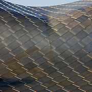 silver gehry wave