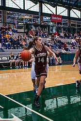 22 January 2011: 100th McLean County Tournament.  Third Place - LeRoy Panthers v Fieldcrest Knights, girls game