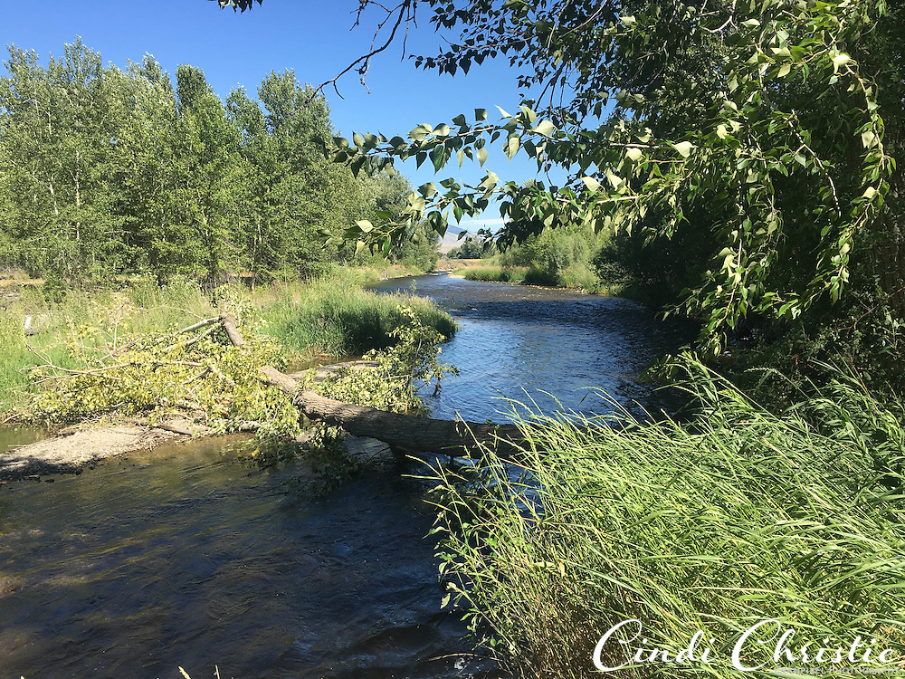 The Sacajawea Interpretive Center is open in  Salmon, Idaho, on July 4, 2016. Trails lead to the Lemhi River. (Cindi Christie/Cyanpixel)