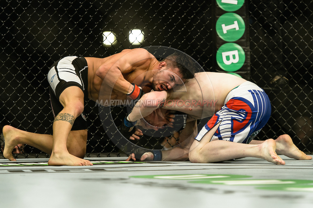 "STOCKHOLM, SWEDEN, JANUARY 24, 2015: Mirsad Bektic and Paul Redmond during ""UFC on Fox 14: Gustafsson vs. Johnson"" inside Tele2 Arena in Stockholm, Sweden"