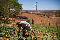 CAETITE, BRAZIL - OCTOBER 25, 2013:<br /> Areldo Silva, 57, and his family agreed to be paid $250 a month to permit Renova Energia with wind turbines on their 46-acre land. A string of wind-turbine parks, in the municipal of Caetite, are being erected in the windiest stretches of Bahia state, Brazil, on Friday, Oct 25, 2013. <br /> (Photo by Lianne Milton/For The Washington Post