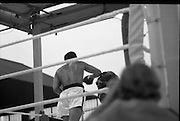 Ali vs Lewis Fight, Croke Park,Dublin..1972..19.07.1972..07.19.1972..19th July 1972..As part of his built up for a World Championship attempt against the current champion, 'Smokin' Joe Frazier,Muhammad Ali fought Al 'Blue' Lewis at Croke Park,Dublin,Ireland. Muhammad Ali won the fight with a TKO when the fight was stopped in the eleventh round...Image shows Lewis trying to put up a defence as Ali drives forward.