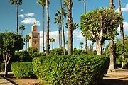 Koutoubia Park, Marrakesh, Morocco, 2015-10-21. <br />