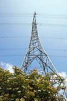 Electricity Pylon above trees